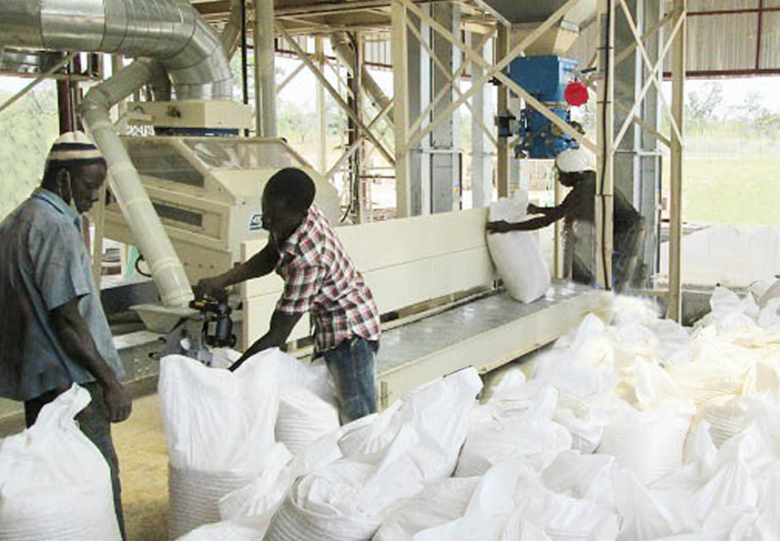 Alvan Blanch Grain Cleaning Drying and Bulk Storage Ilorin Nigeria Page 2 Image 0001