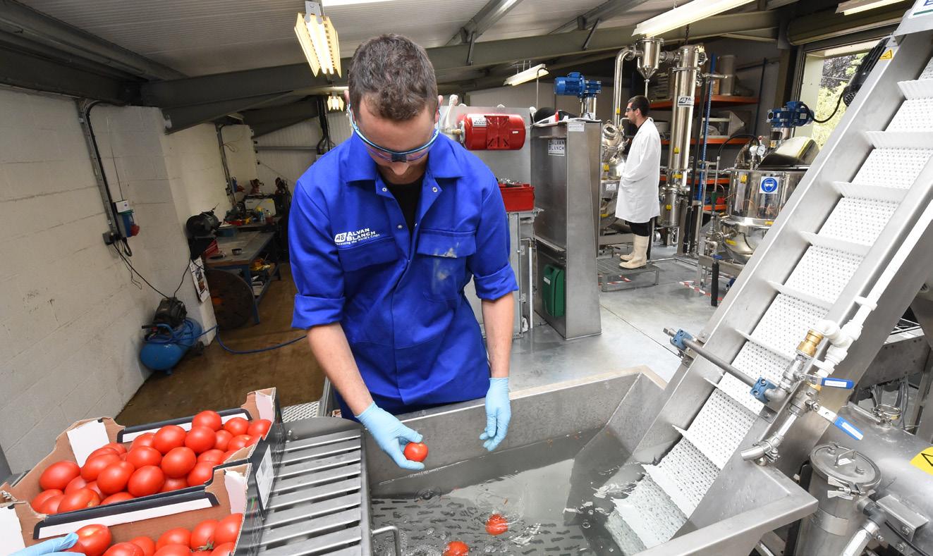 Alvan Blanch Tomato Paste Processing System Nigeria Page 1 Image 0002