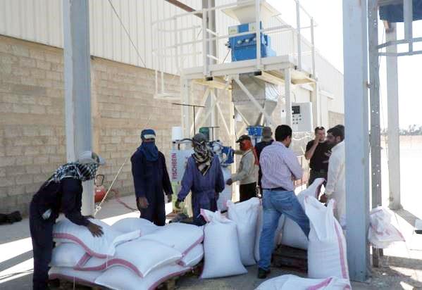 Alvan Blanch Bagging System Saudi Arabia 8 sack per minute 24tph